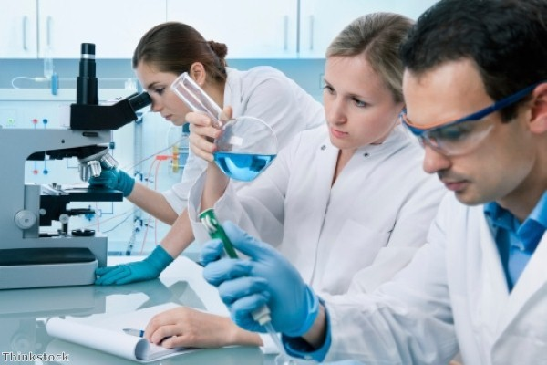 Is there a biology gender divide?