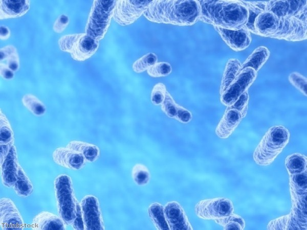 Study reveals microbial imbalance in Crohn's patients