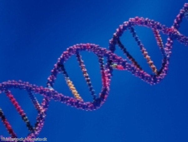 Genome sequence breakthrough could hold key to new drugs