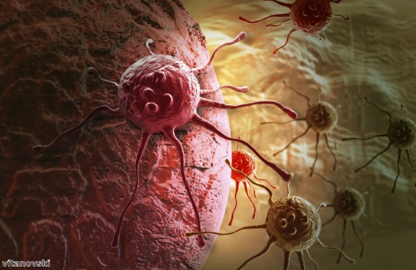 Researchers identify protein that helps cancer cells survive